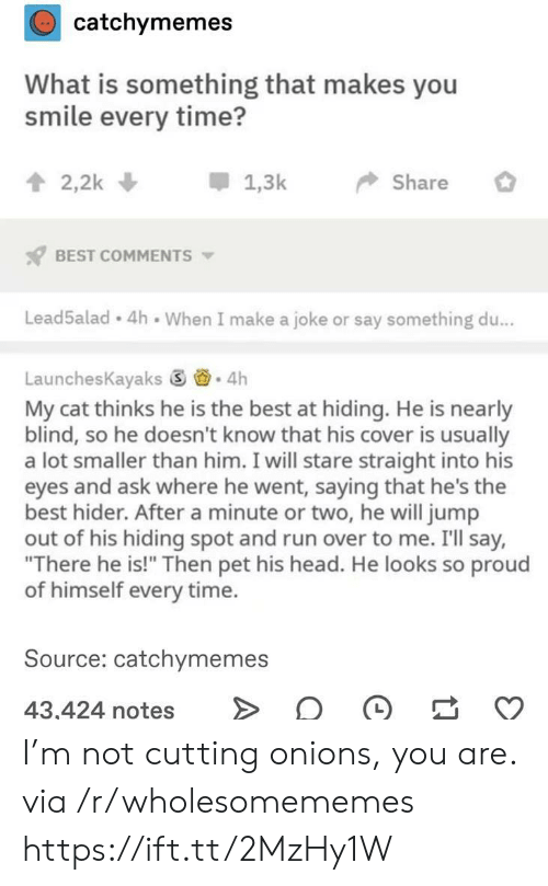 """Head, Run, and Best: catchymemes  What is something that makes you  smile every time?  2,2k  1,3k  Share  BEST COMMENTS  Lead5alad 4h When I make a joke or say something du...  LaunchesKayaks 4h  My cat thinks he is the best at hiding. He is nearly  blind, so he doesn't know that his cover is usually  a lot smaller than him. I will stare straight into his  eyes and ask where he went, saying that he's the  best hider. After a minute or two, he will jump  out of his hiding spot and run over to me. I'll say,  """"There he is!"""" Then pet his head. He looks so proud  of himself every time.  Source: catchymemes  43,424 notes I'm not cutting onions, you are. via /r/wholesomememes https://ift.tt/2MzHy1W"""