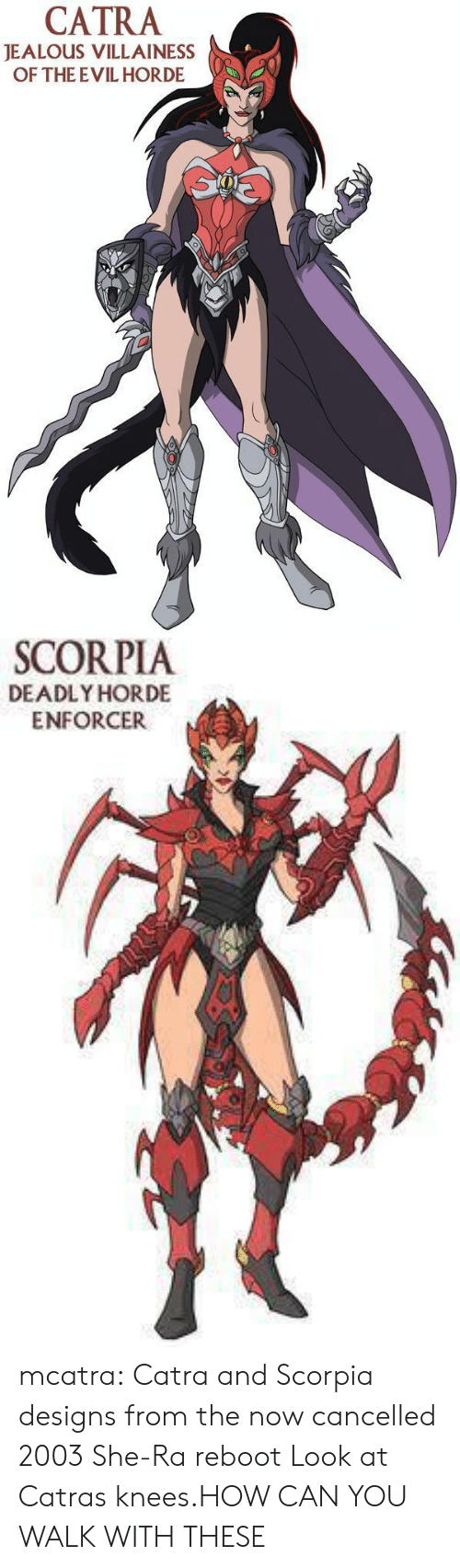 Jealous, Tumblr, and Blog: CATRA  JEALOUS VILLAINESS  OF THE EVIL HORDE   SCORPIA  DEADLY HORDE  ENFORCER mcatra:  Catra and Scorpia designs from the now cancelled 2003 She-Ra reboot  Look at Catras knees.HOW CAN YOU WALK WITH THESE