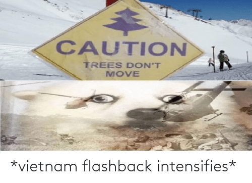 Trees, Vietnam, and Intensifies: CAUTION  TREES DON'T  MOVE *vietnam flashback intensifies*