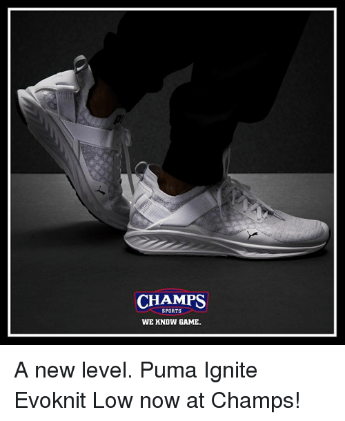 Memes, Sports, and Puma: CHAMPS  SPORTS  WE KNOW GAME A new level. Puma Ignite Evoknit Low now at Champs!