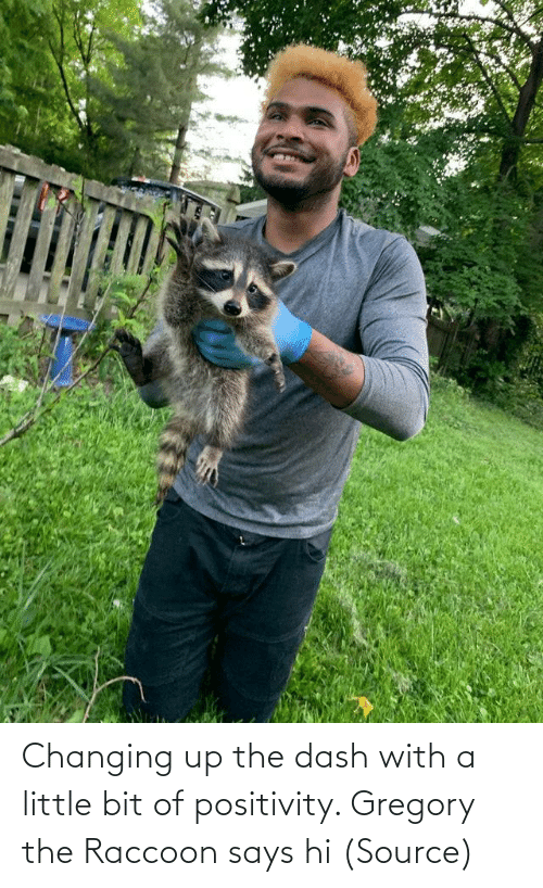 A Little: Changing up the dash with a little bit of positivity. Gregory the Raccoon says hi(Source)