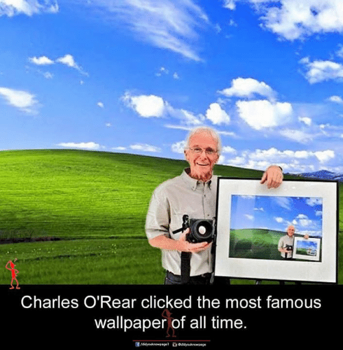 Memes, Time, and Wallpaper: Charles O'Rear clicked the most famous  wallpaper of all time
