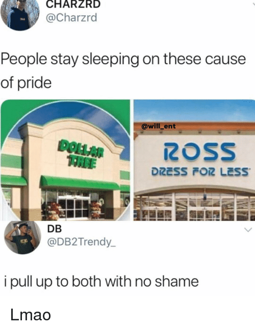 Lmao, Memes, and Dollar Tree: CHARZRD  @Charzrd  People stay sleeping on these cause  of pride  @will_ent  DOLLAR  TREE  DRESS  LESS.  DB  @DB2Trendy  i pull up to both with no shame Lmao