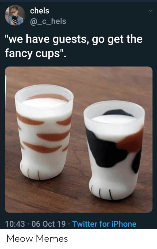"""meow: chels  @_c_hels  """"we have guests, go get the  fancy cups"""".  10:43 06 Oct 19 Twitter for iPhone Meow Memes"""