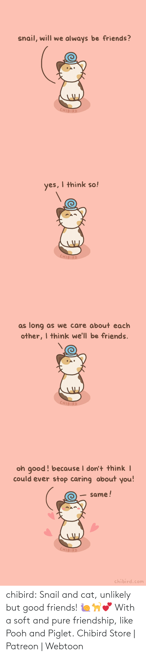 pure: chibird:  Snail and cat, unlikely but good friends! 🐌🐈💕 With a soft and pure friendship, like Pooh and Piglet.  Chibird Store   Patreon   Webtoon