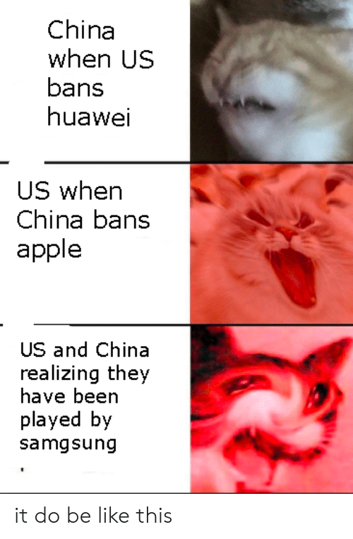 Bans: China  when US  bans  huawei  US when  China bans  apple  US and China  realizing they  have been  played by  samgsung it do be like this