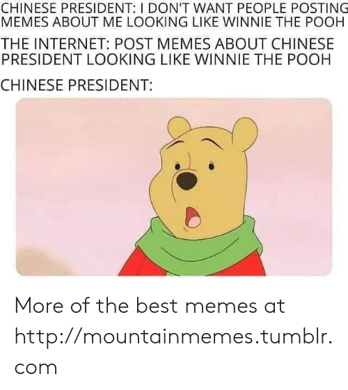 pooh: CHINESE PRESIDENT: I DON'T WANT PEOPLE POSTING  MEMES ABOUT ME LOOKING LIKE WINNIE THE POOH  THE INTERNET: POST MEMES ABOUT CHINESE  PRESIDENT LOOKING LIKE WINNIE THE POOH  CHINESE PRESIDENT: More of the best memes at http://mountainmemes.tumblr.com