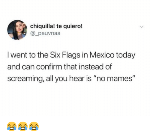 """Chiquilla: chiquilla! te quiero!  @_pauvnaa  I went to the Six Flags in Mexico today  and can confirm that instead of  screaming, all you hear is """"no mames"""" 😂😂😂"""