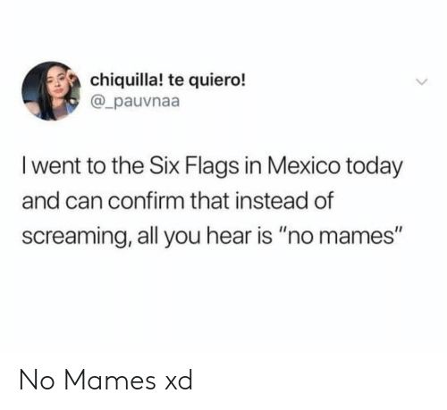 """Chiquilla: chiquilla! te quiero!  @_pauvnaa  I went to the Six Flags in Mexico today  and can confirm that instead of  screaming, all you hear is """"no mames"""" No Mames xd"""