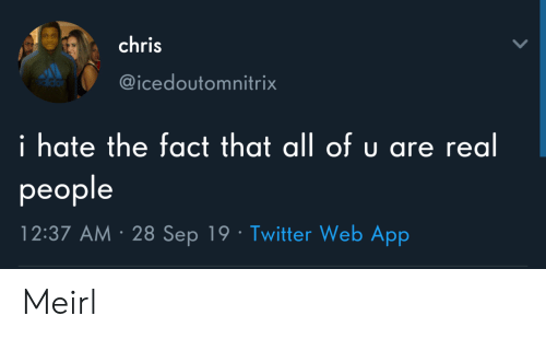 Twitter, MeIRL, and App: chris  @icedoutomnitrix  i hate the fact that all of u are real  рeople  12:37 AM 28 Sep 19 Twitter Web App Meirl