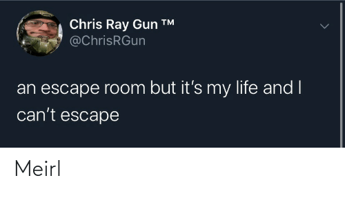 gun: Chris Ray Gun ™  @ChrisRGun  an escape room but it's my life and I  can't escape Meirl