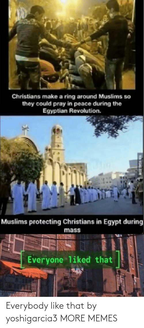 Revolution: Christians make a ring around Muslims so  they could pray in peace during the  Egyptian Revolution.  Muslims protecting Christians in Egypt during  mass  Everyone liked that  SGAG Everybody like that by yoshigarcia3 MORE MEMES