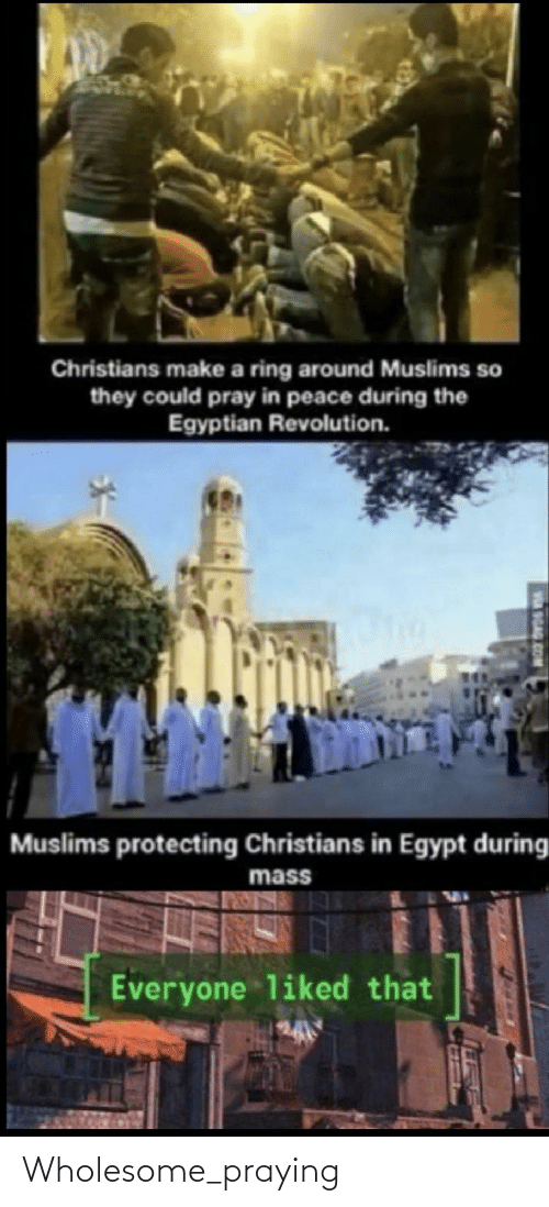 Revolution: Christians make a ring around Muslims so  they could pray in peace during the  Egyptian Revolution.  Muslims protecting Christians in Egypt during  mass  Everyone liked that  9GAG.COM Wholesome_praying