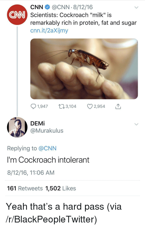 """Blackpeopletwitter, cnn.com, and Protein: CNN@CNN 8/12/16  Scientists: Cockroach """"milk"""" is  remarkably rich in protein, fat and sugar  cnn.it/2aXijmy  CNN  1,947, 2,954  DEMİ  @Murakulus  Replying to @CNN  I'm Cockroach intolerant  8/12/16, 11:06 AM  161 Retweets 1,502 Likes Yeah that's a hard pass (via /r/BlackPeopleTwitter)"""