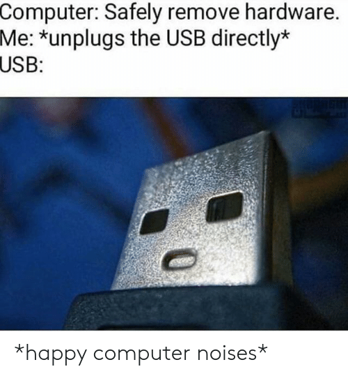 usb: Computer: Safely remove hardware.  Me: *unplugs the USB directly*  USB: *happy computer noises*