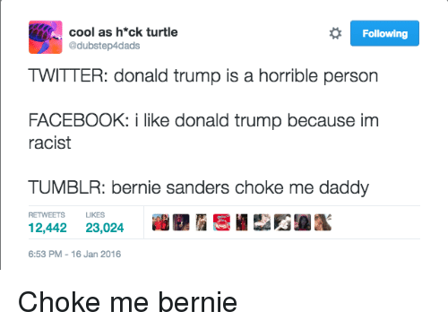 Bernie Sanders, Donald Trump, and Facebook: cool as h*ck turtle  @dubstep4dads  Following  TWITTER: donald trump is a horrible person  FACEBOOK: i like donald trump because im  racist  TUMBLR: bernie sanders choke me daddy  12,442 23,024 i 9,i.rr_E  RETWEETS LIKES  6:53 PM-16 Jan 2016 Choke me bernie