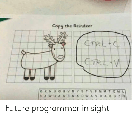Future, Reindeer, and Programmer: Copy the Reindeer Future programmer in sight