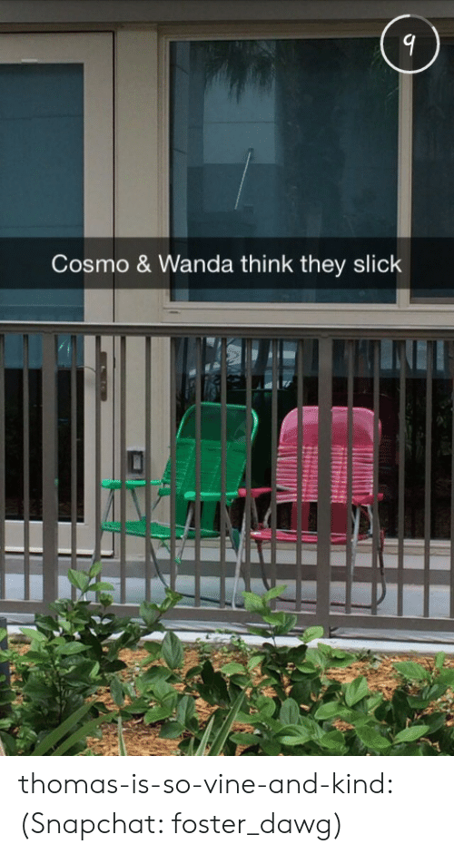 Slick, Snapchat, and Target: Cosmo & Wanda think they slick thomas-is-so-vine-and-kind: (Snapchat: foster_dawg)