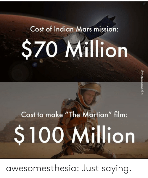 "The Martian, Tumblr, and Blog: Cost of Indian Mars mission:  $70 Million  Cost to make ""The Martian"" film:  $100 Million  @meteoramedia awesomesthesia:  Just saying."