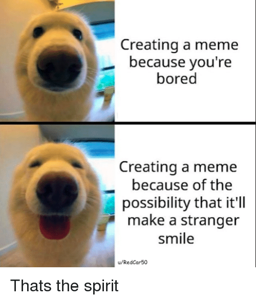 Bored, Meme, and Smile: Creating a meme  because you're  bored  Creating a meme  because of the  possibility that it'll  make a stranger  smile  u/RedCar50 Thats the spirit