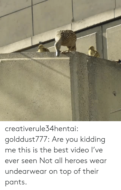 Tumblr, Best, and Blog: creativerule34hentai:  golddust777: Are you kidding me this is the best video I've ever seen Not all heroes wear undearwear on top of their pants.