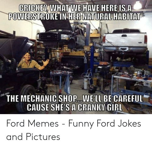 Ford Memes Funny: CRICIKE, WHAT WE HAVE HEREISA  POWERSTROKE IN HER NATURAL HABITAT  THE MECHANIC SHOP..WELL BE CAREFUL  CAUSE SHES A CRANIKV GIRL Ford Memes - Funny Ford Jokes and Pictures