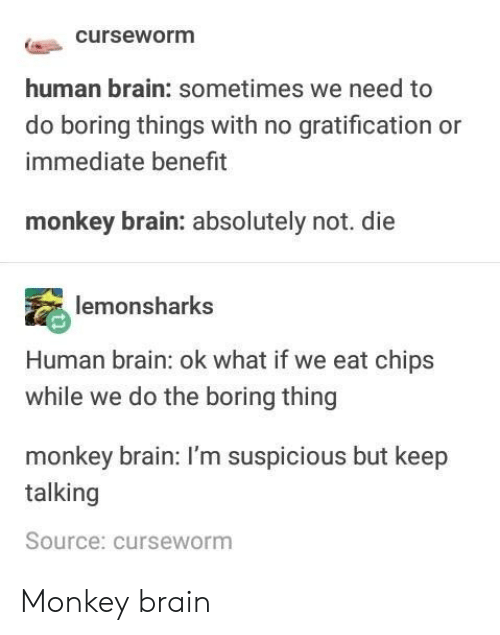 Suspicious: curseworm  human brain: sometimes we need to  do boring things with no gratification or  immediate benefit  monkey brain: absolutely not. die  lemonsharks  Human brain: ok what if we eat chips  while we do the boring thing  monkey brain: I'm suspicious but keep  talking  Source: curseworm Monkey brain