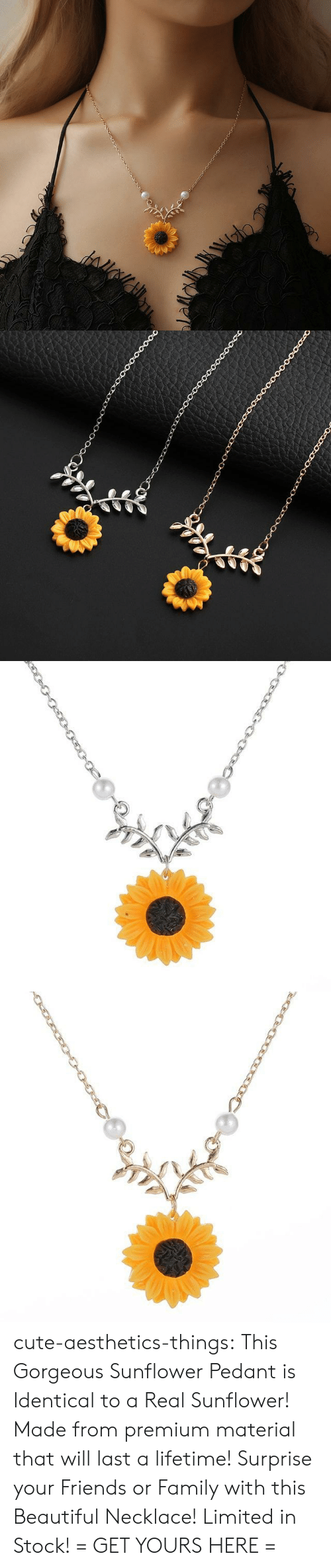 Beautiful, Cute, and Family: cute-aesthetics-things: This Gorgeous Sunflower Pedant is Identical to a Real Sunflower! Made from premium material that will last a lifetime! Surprise your Friends or Family with this Beautiful Necklace! Limited in Stock! = GET YOURS HERE =