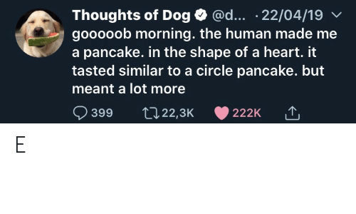 pancake: @d... .22/04/19  Thoughts of Dog  gooooob morning. the human made me  a pancake. in the shape of a heart. it  tasted similar to a circle pancake. but  meant a lot more  399  t22,3K  222K E