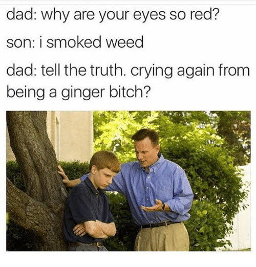 gingerly: dad: why are your eyes so red?  son: i smoked weed  dad: tell the truth. crying again from  being a ginger bitch?