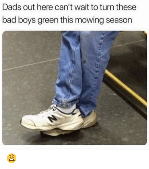 Bad, Bad Boys, and Funny: Dads out here can't wait to turn these  bad  boys green this mowing season 😩