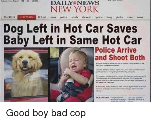 America, Bad, and New York: DAILY NEws  NEW YORK  AMERICA  NEW YORK  LOCAL news poitics sports showbiz. I opinion living photos videoautos  Dog Left in Hot Car Saves  Baby Left in Same Hot Car  Police Arrive  and Shoot Both Good boy bad cop