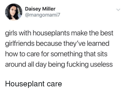 Fucking, Girls, and Best: Daisey Miller  @mangomami7  girls with houseplants make the best  girlfriends because they've learned  how to care for something that sits  around all day being fucking useless Houseplant care