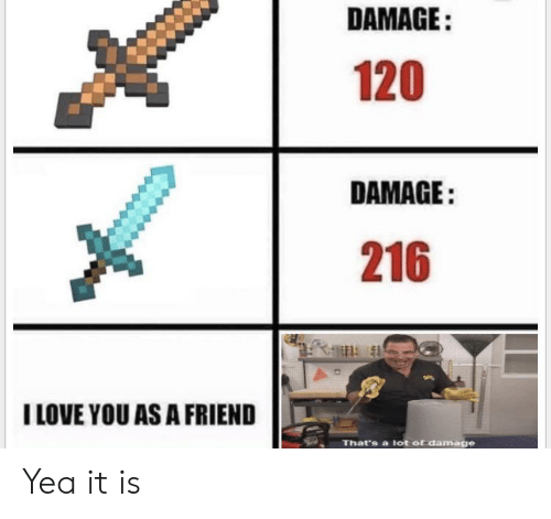 Love, I Love You, and Friend: DAMAGE:  120  DAMAGE:  216  I LOVE YOU AS A FRIEND  That's a lot of damage Yea it is