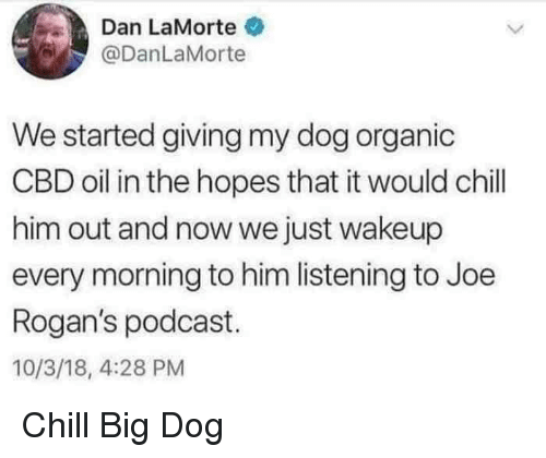 Chill, Dog, and Podcast: Dan LaMorte  @DanLaMorte  We started giving my dog organic  CBD oil in the hopes that it would chill  him out and now we just wakeup  every morning to him listening to Joe  Rogan's podcast.  10/3/18, 4:28 PM Chill Big Dog