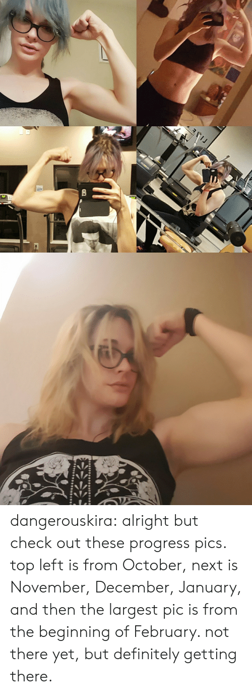 Definitely, Tumblr, and Blog: dangerouskira:  alright but check out these progress pics. top left is from October, next is November, December, January, and then the largest pic is from the beginning of February. not there yet, but definitely getting there.