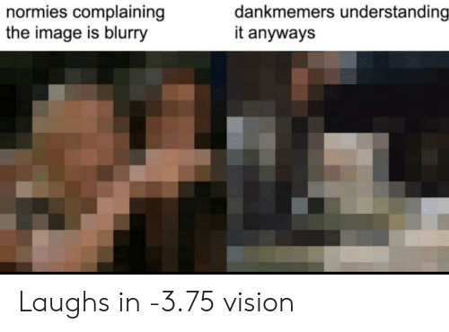 Vision, Image, and Understanding: dankmemers understanding  it anyways  normies complaining  the image is blurry Laughs in -3.75 vision