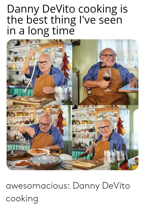Danny Devito: Danny DeVito cooking is  the best thing I've seen  in a long time awesomacious:  Danny DeVito cooking