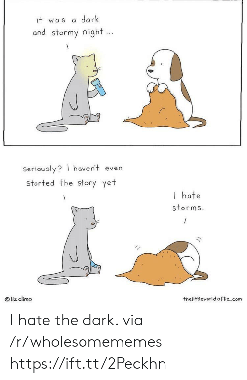 Liz Climo: dark  it was  and stormy night...  Seriously? haven't even  storted the Story yet  I hate  storms.  liz climo  thelittleworld ofliz.com I hate the dark. via /r/wholesomememes https://ift.tt/2Peckhn