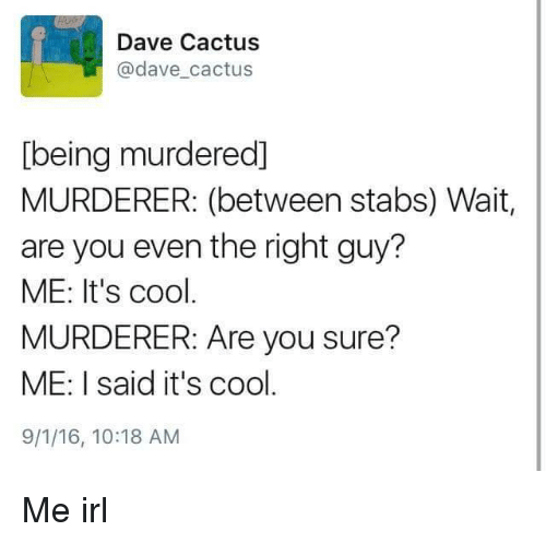 Cool, Irl, and Me IRL: Dave Cactus  @dave cactus  [being murdered]  MURDERER: (between stabs) Wait  are you even the right guy?  ME: It's cool  MURDERER: Are you sure?  ME: I said it's cool  9/1/16, 10:18 AM Me irl