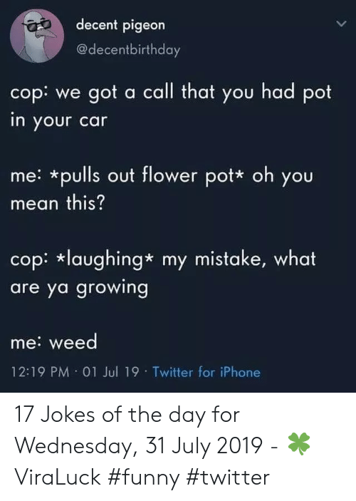 Funny, Iphone, and Twitter: decent pigeon  @decentbirthday  cop: we got a call that you had pot  in your car  me: *pulls out flower pot* oh you  mean this?  cop: laughing* my mistake, what  are ya growing  me: weed  12:19 PM 01 Jul 19 Twitter for iPhone 17 Jokes of the day for Wednesday, 31 July 2019 - 🍀ViraLuck #funny #twitter