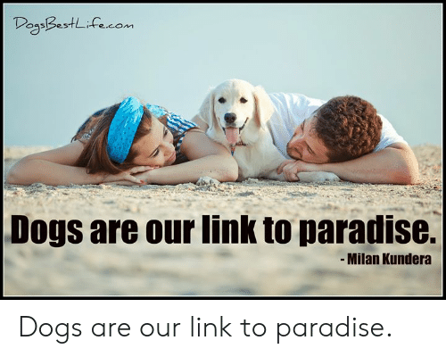 Dogs, Memes, and Paradise: DegaBestLifecom  Dogs are our link to paradise.  -Milan Kundera Dogs are our link to paradise.