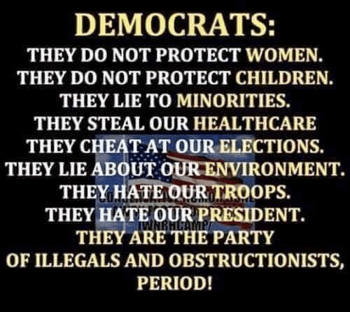 Elections: DEMOCRATS:  THEY DO NOT PROTECT WOMEN.  THEY DO NOT PROTECT CHILDREN.  THEY LIE TO MINORITIES.  THEY STEAL OUR HEALTHCARE  THEY CHEAT AT OUR ELECTIONS  THEY LIE ABOUT OUR ENVIRONMENT.  THEY HATE OUR TROOPS.  THEY HATE OUR PRESIDENT.  THEY ARE THE PARTY  OF ILLEGALS AND OBSTRUCTIONISTS,  PERIOD!