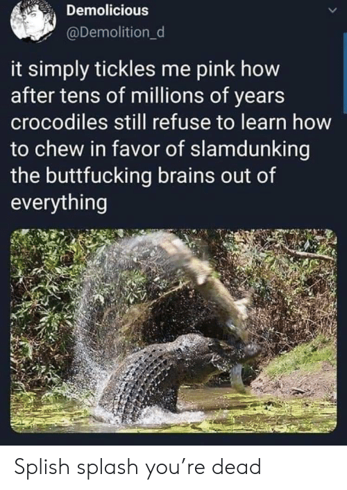Pink: Demolicious  @Demolition_d  it simply tickles me pink how  after tens of millions of years  crocodiles still refuse to learn how  to chew in favor of slamdunking  the buttfucking brains out of  everything Splish splash you're dead