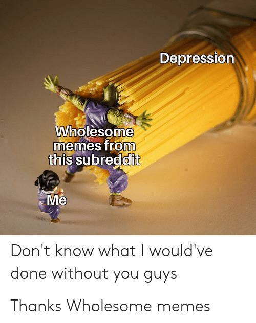 Memes, Depression, and Wholesome: Depression  Wholesome  memes from  this subreddit  Me  Don't know what I would've  done without you guys Thanks Wholesome memes