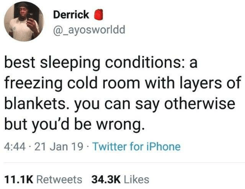 Layers: Derrick O  @_ayosworldd  best sleeping conditions: a  freezing cold room with layers of  blankets. you can say otherwise  but you'd be wrong.  4:44 21 Jan 19 Twitter for iPhone  11.1K Retweets 34.3K Likes