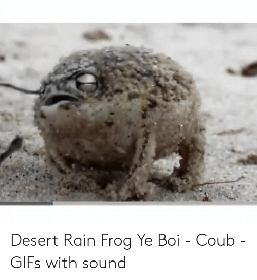 A Tiny Angry Squeaking Frog Super Cute Animals Bbc Youtube