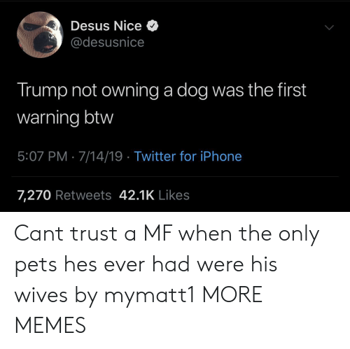 Dank, Iphone, and Memes: Desus Nice  @desusnice  Trump not owning a dog was the first  warning btw  5:07 PM 7/14/19 Twitter for iPhone  7,270 Retweets 42.1K Likes Cant trust a MF when the only pets hes ever had were his wives by mymatt1 MORE MEMES