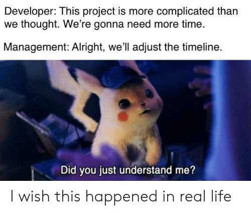 Life, Time, and Thought: Developer: This project is more complicated than  we thought. We're gonna need more time.  Management: Alright, we'll adjust the timeline.  Did you just understand me? I wish this happened in real life