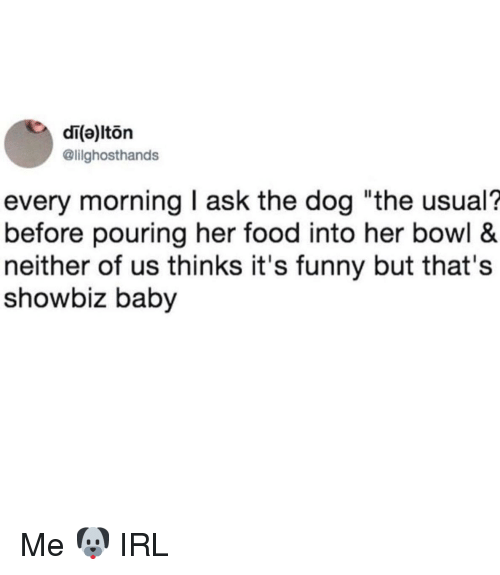 """Food, Funny, and Irl: di(a)lton  @lilghosthands  every morning I ask the dog """"the usual?  before pouring her food into her bowl &  neither of us thinks it's funny but that's  showbiz baby Me 🐶 IRL"""